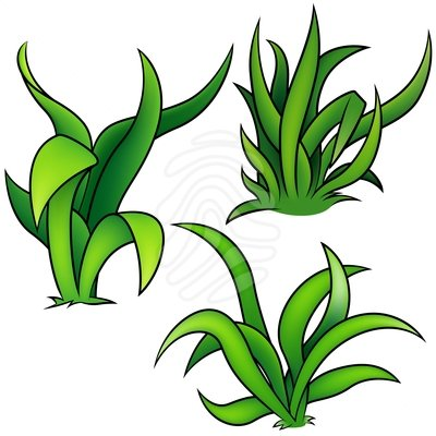 Grass And Flowers Clipart.