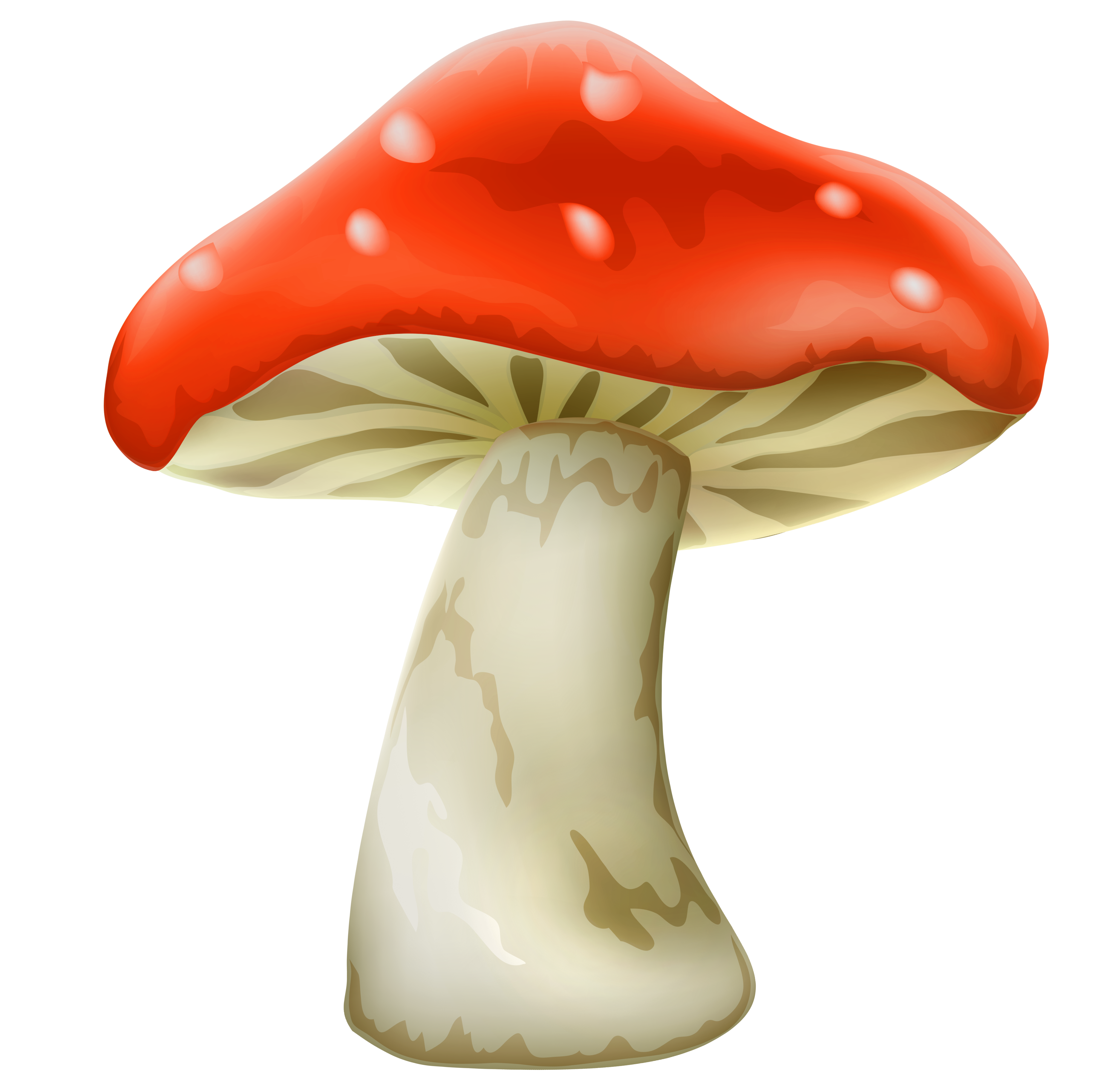 China Mushroom Clipart Clipground