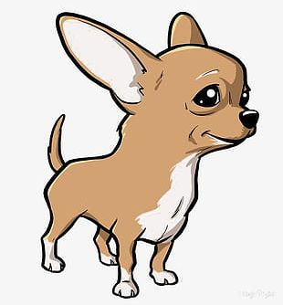 Chihuahuas PNG Images, Chihuahuas Clipart Free Download.