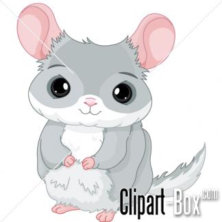 Chinchilla Clipart.