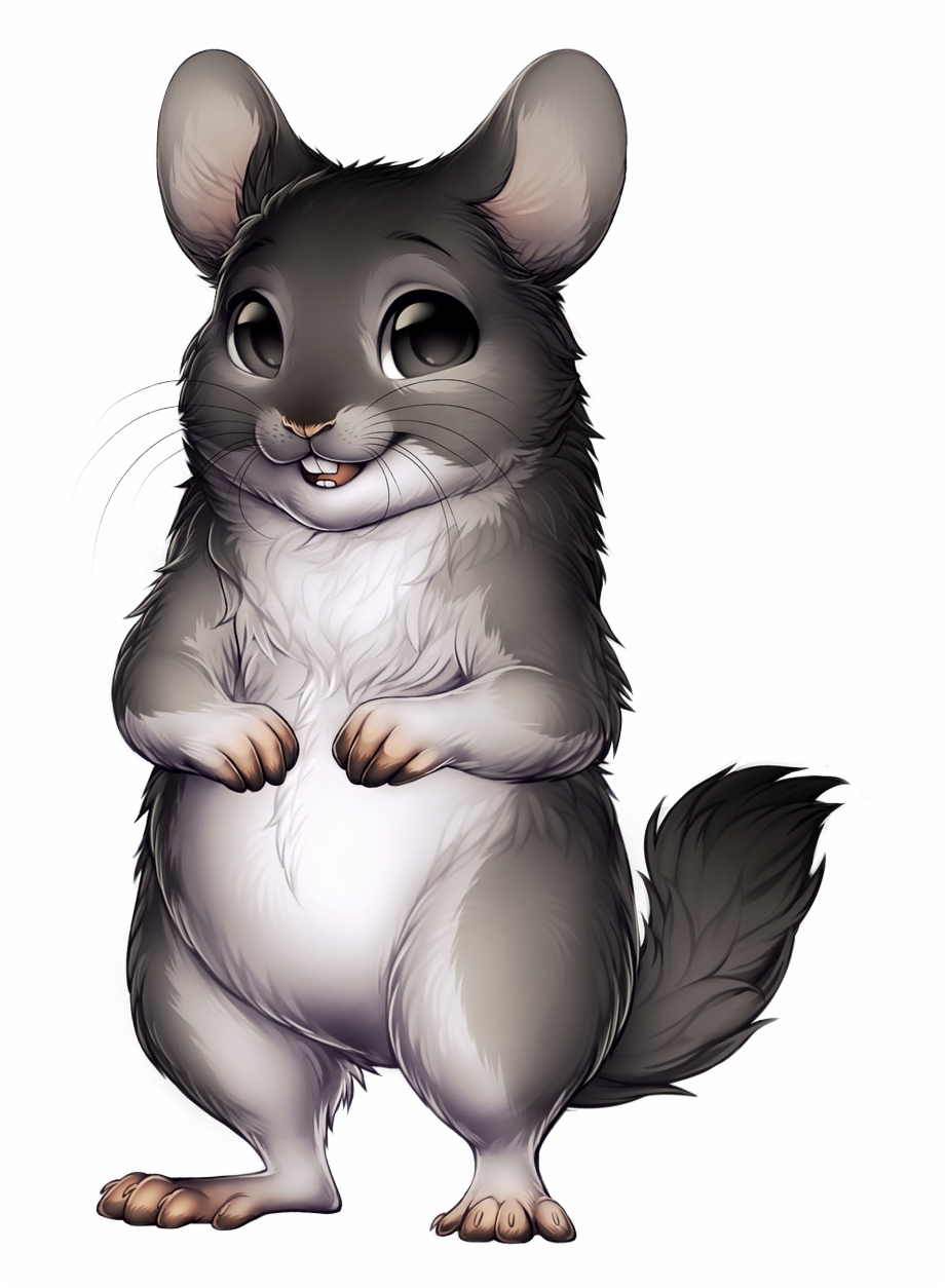 Transparent Background Chinchilla Png Free PNG Images & Clipart.