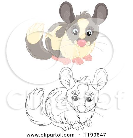 Clipart of a Cute Gray Chinchilla.