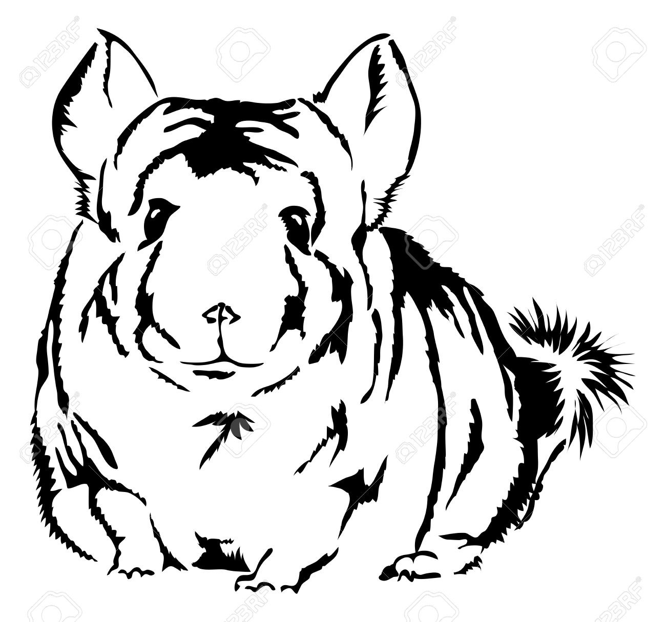 Chinchilla silhouette clipart.