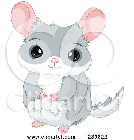 Cartoon of a Cute Chinchilla.