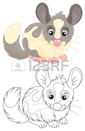 240 Chinchilla Cliparts, Stock Vector And Royalty Free Chinchilla.