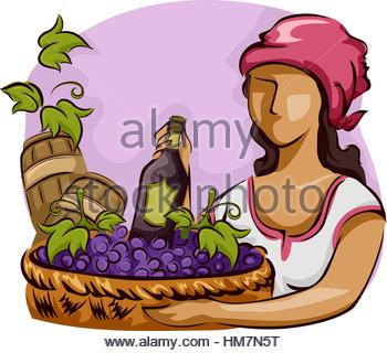France Vineyard Stock Photos & France Vineyard Stock Images.