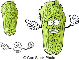 Chinese cabbage clipart - Clipground