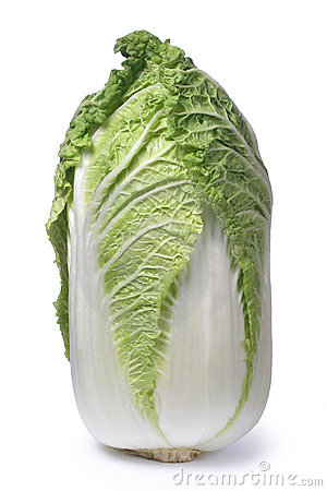 Chinese Cabbage Royalty Free Stock Photo.