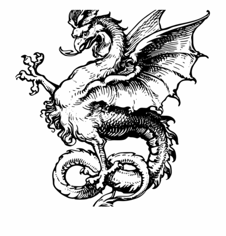 Dragon Clipart Black And White 22604 Chinese Dragon.