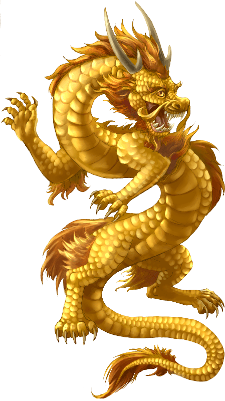 Chinese Dragon Gold transparent PNG.
