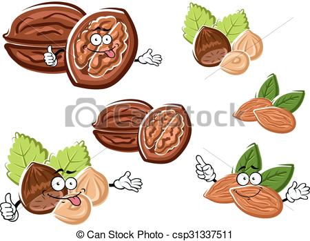 Vector Clip Art of Almond, walnut and hazelnut with kernels.