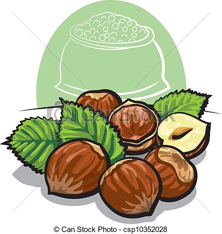 Vector Illustration of Hazelnuts with leaves csp10352028.