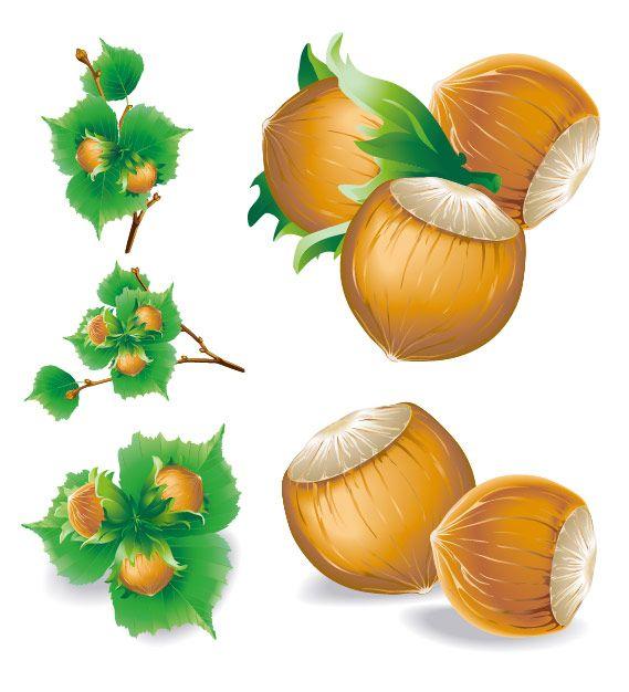 1000+ images about Fruits clip art on Pinterest.