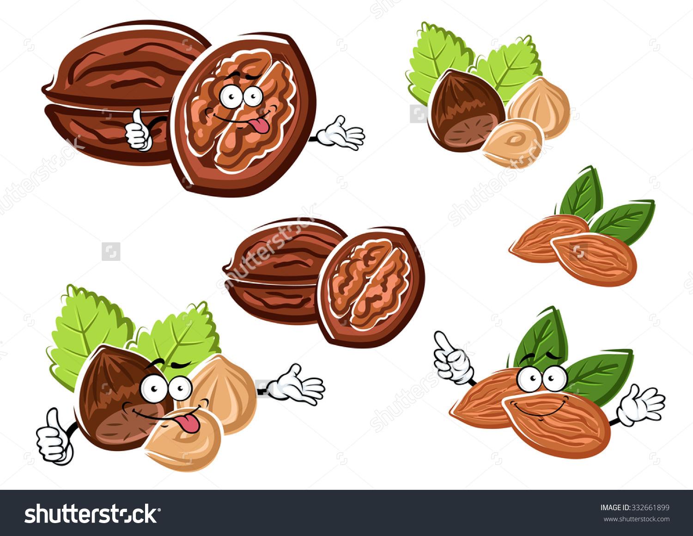 Funny Walnut Almond Hazelnut Cartoon Characters Stock Vector.