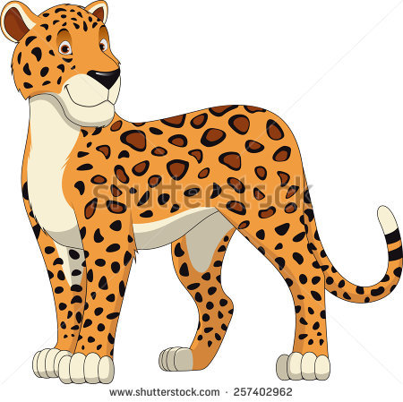Leopard Isolated Stock Photos, Royalty.