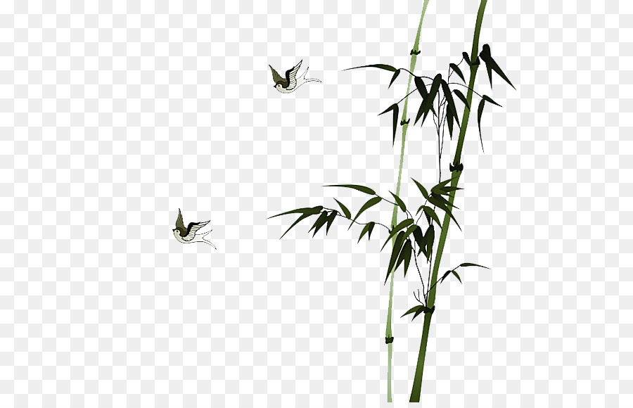Bamboo Leaf png download.