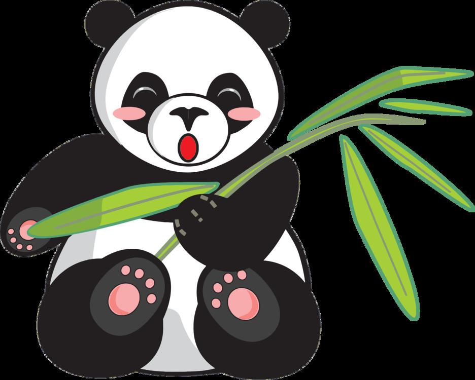Giant Panda,Carnivoran,Bear PNG Clipart.