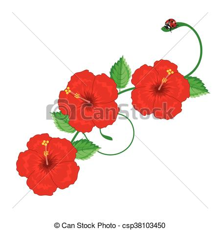 Clipart Vector of Illustration. hibiscus,Chinese rose color red.