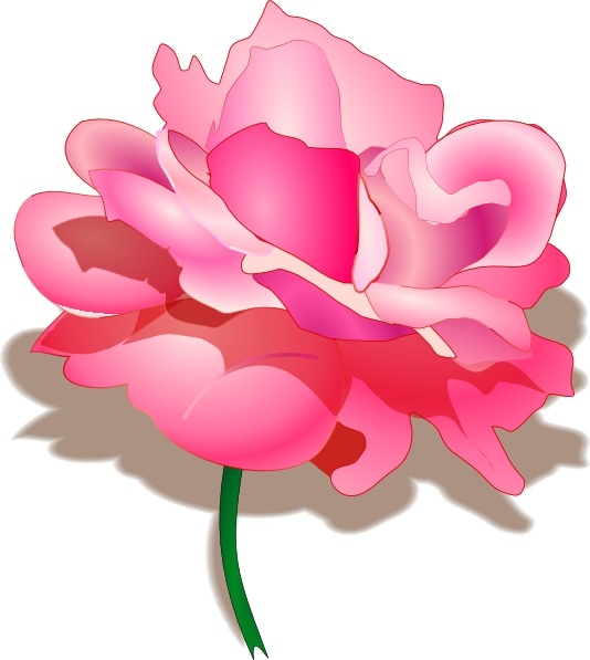 Rose clip art Free vector in Open office drawing svg ( .svg.