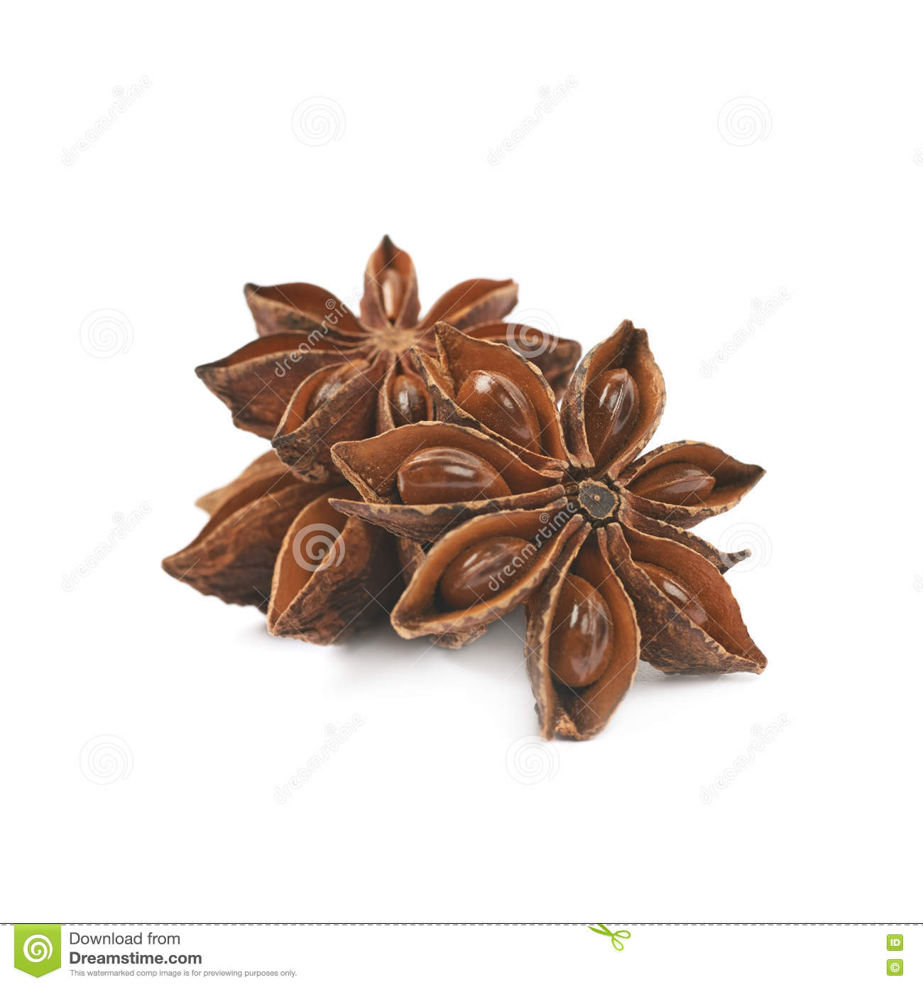 Chinese Star Anise Seed Isolated Stock Photo.