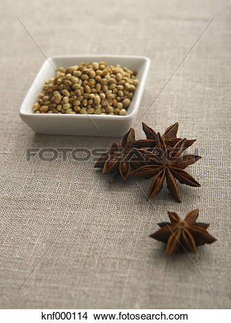 Stock Photo of Chinese star anise and mustard seed, close up.