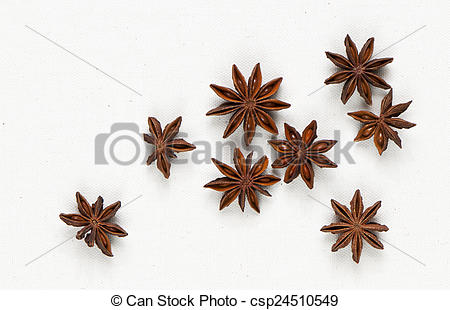 Stock Photo of Star anise, star aniseed, or Chinese star anise on.