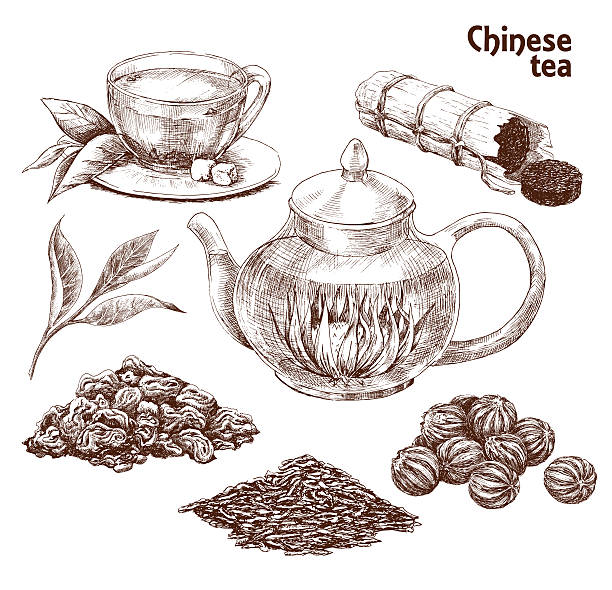 Best Chinese Tea Illustrations, Royalty.
