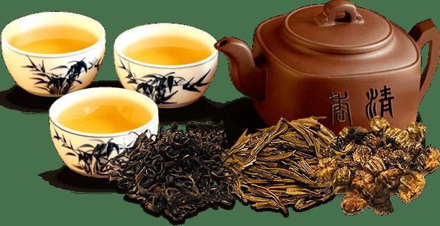 Tea, Cup, transparent png image & clipart free download.