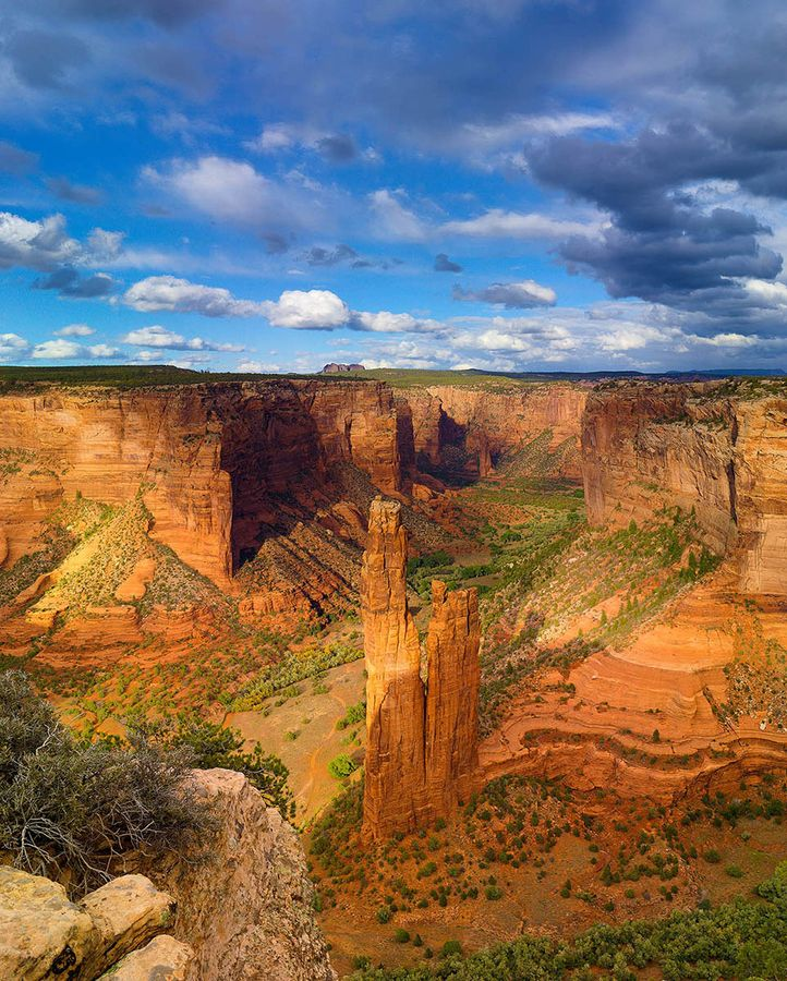 1000+ images about home sweet home, arizona on Pinterest.