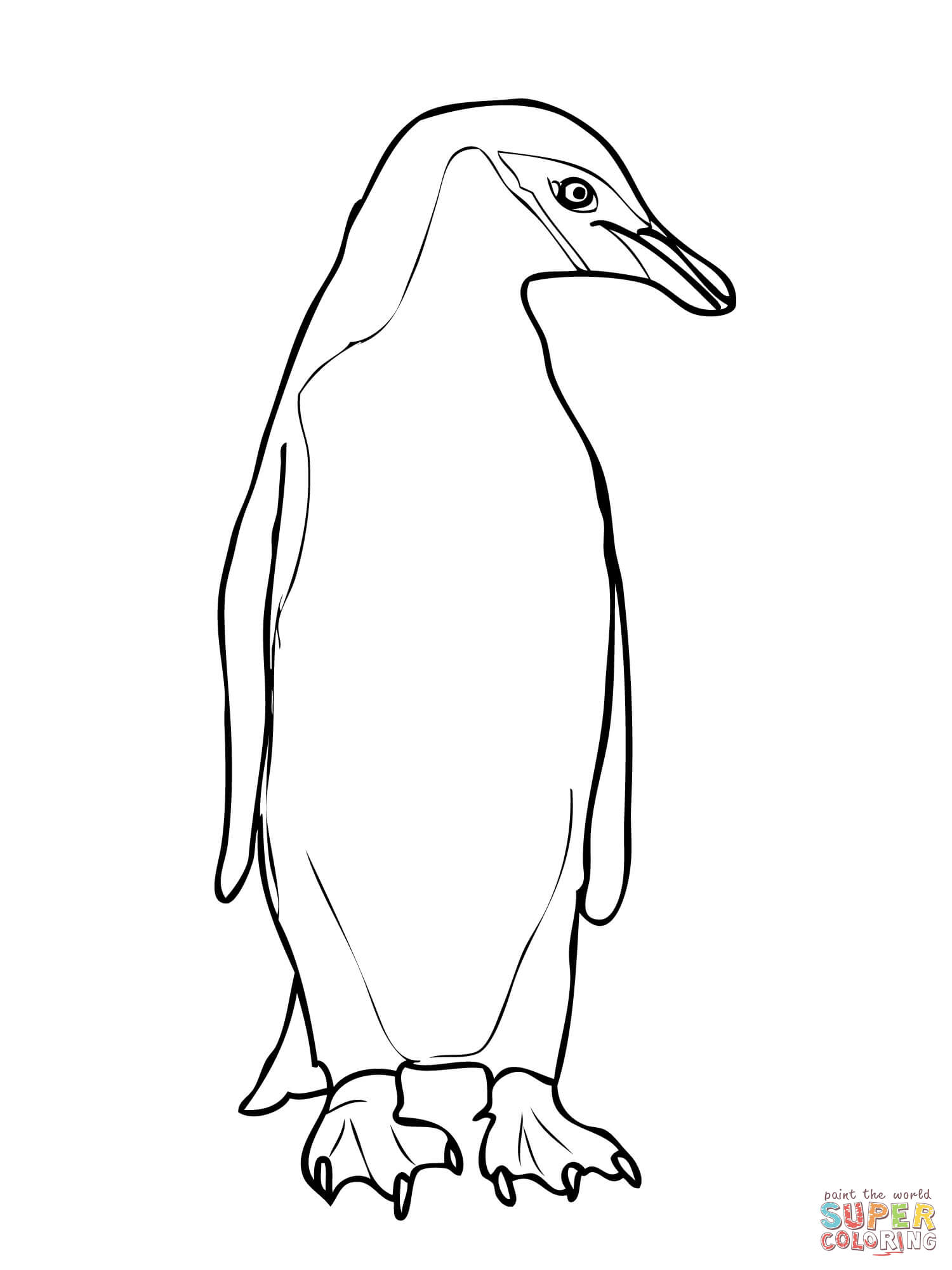 Chinstrap Penguin coloring page.