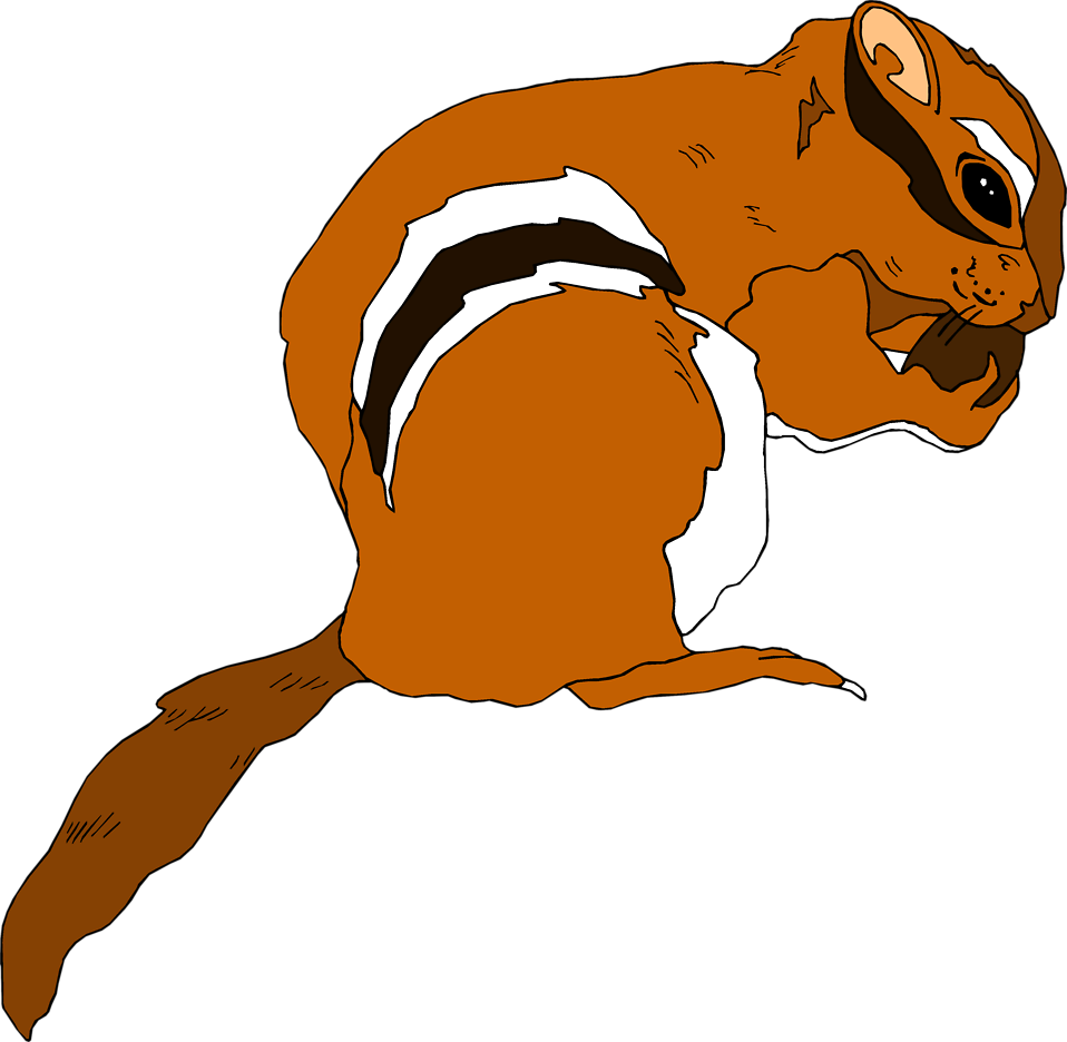 Clear background chipmunk clipart.