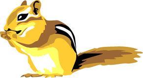 Chipmunk Stock Illustrations.