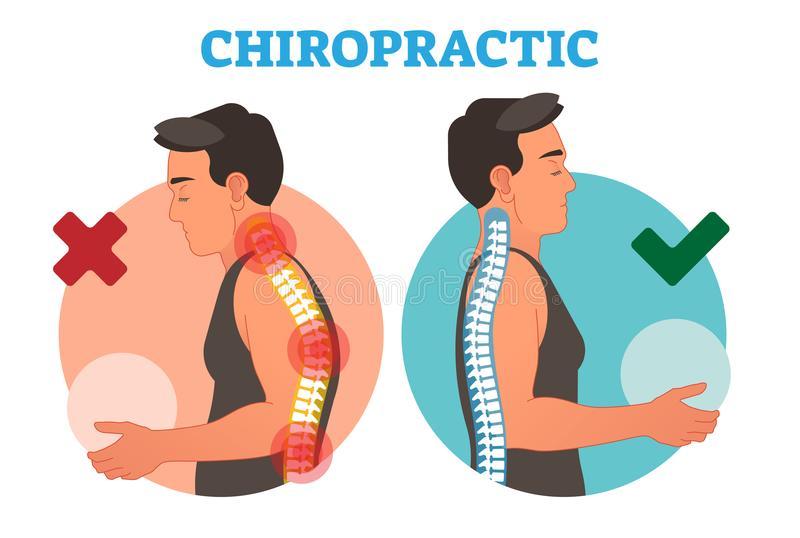 Chiropractic Stock Illustrations.
