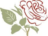Christmas Rose Clipart, Christmas Rose, Christmas Rose Image.