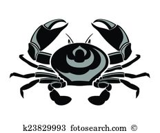 Chitin Clip Art Vector Graphics. 234 chitin EPS clipart vector and.