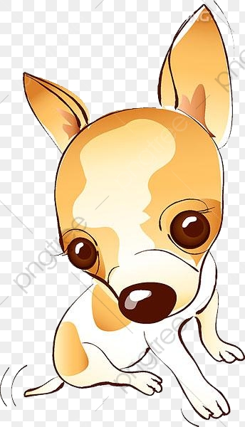 Lovely Chihuahua, Chihuahua, Puppy, Pet PNG Transparent Image and.