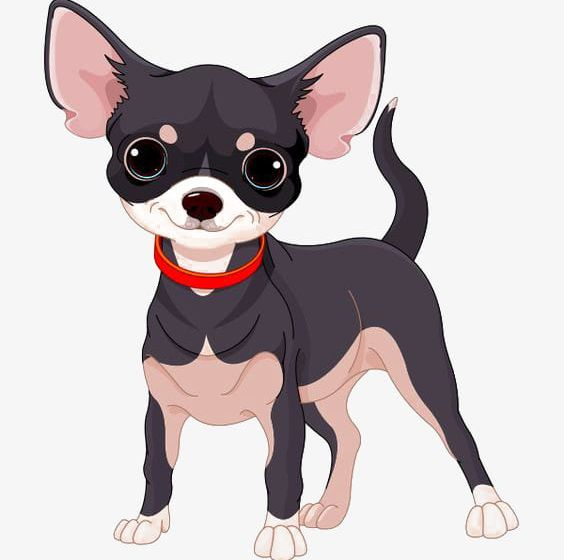 Cartoon Chihuahua PNG, Clipart, Black, Cartoon, Cartoon Clipart.