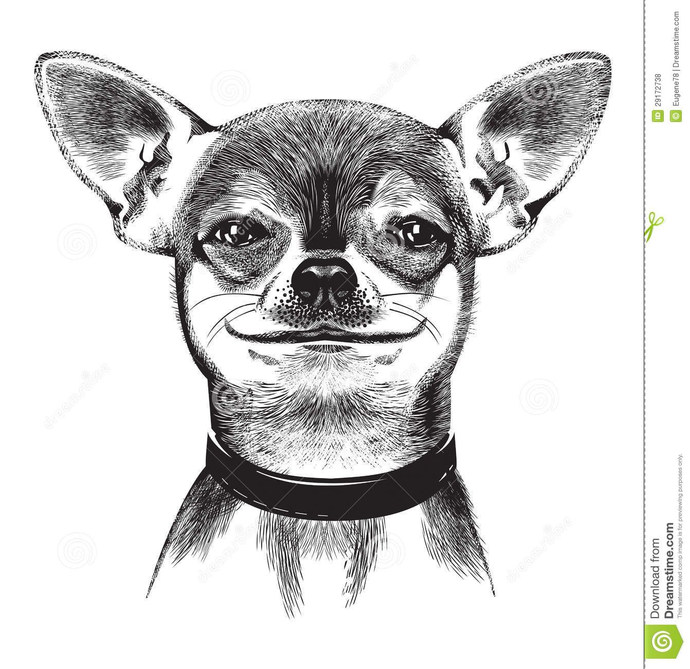 Cartoon Chihuahua Dog Clip Art Royalty Free Stock Image.