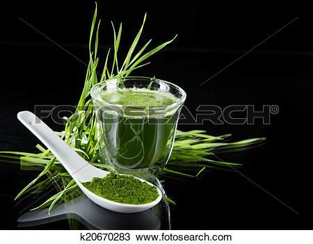 Stock Photo of detox. young barley, chlorella superfood. k20670283.