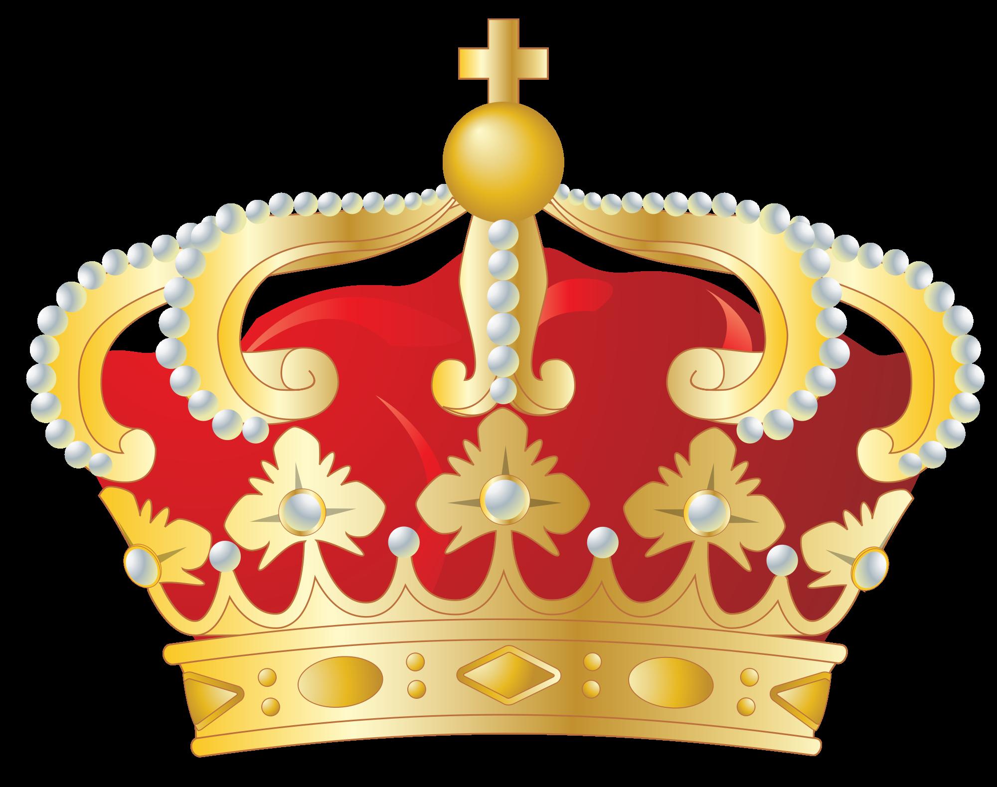 Protista Kingdom copy1 on emaze.