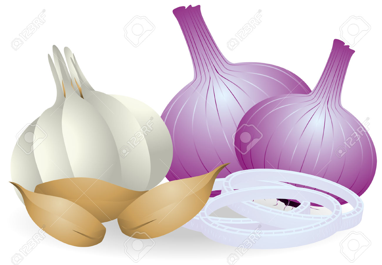 Onion and garlic clipart.