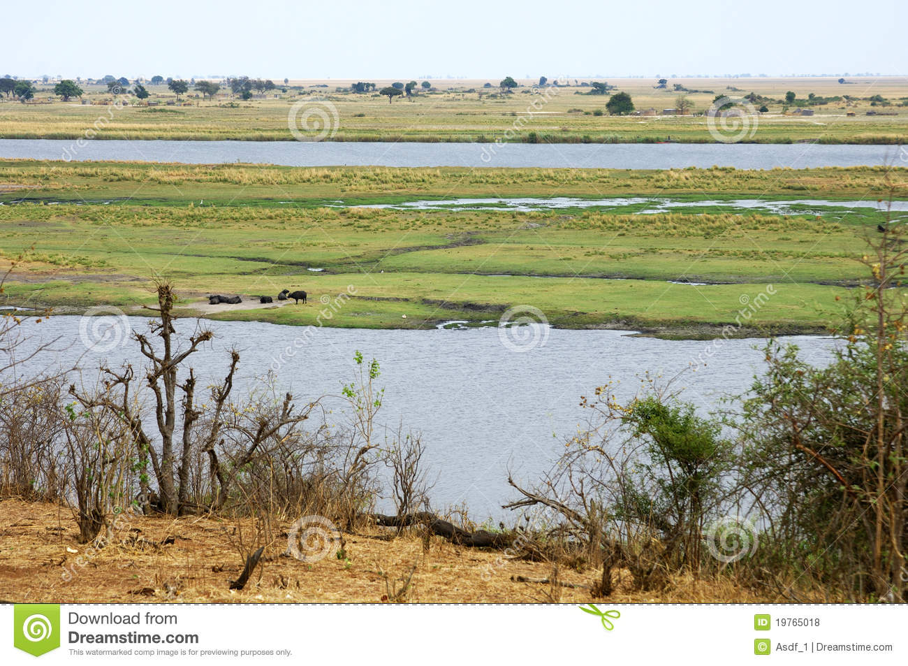 Chobe River, Border Of Botswana And Namibia Royalty Free Stock.