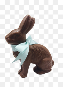 Chocolate Bunny png free download.