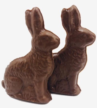 Chocolate Bunny Png.