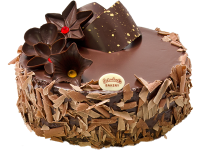 Chocolate Cake PNG HD Transparent Chocolate Cake HD.PNG Images.