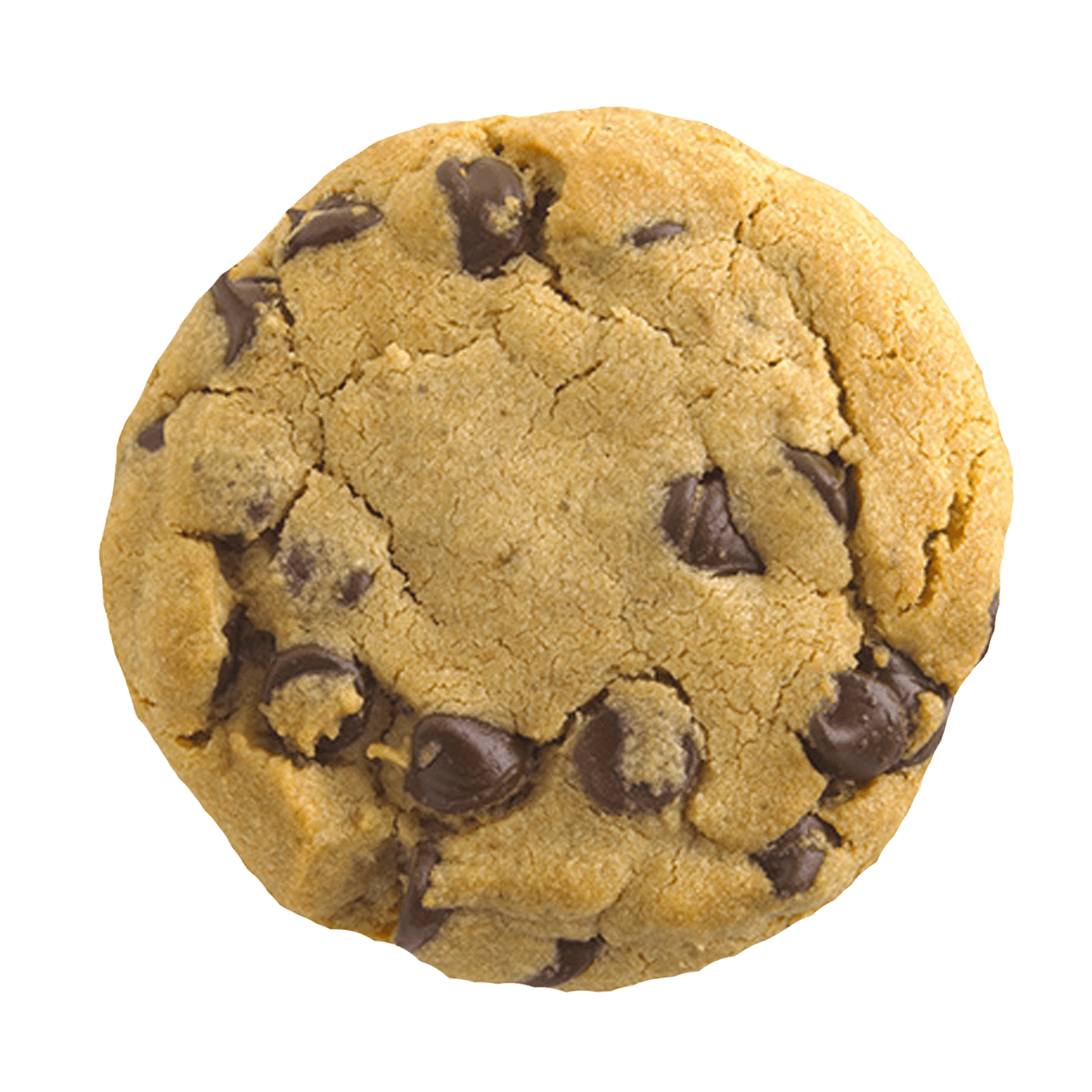 Cookie Clicker Chocolate chip cookie Clip art.