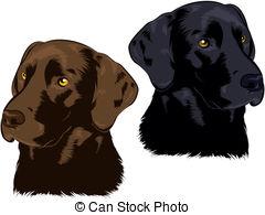 Labrador Illustrations and Stock Art. 2,548 Labrador illustration.