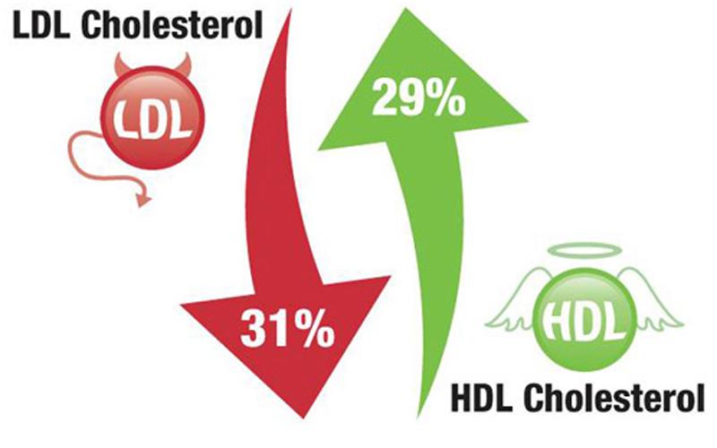 Cholesterol Clipart.