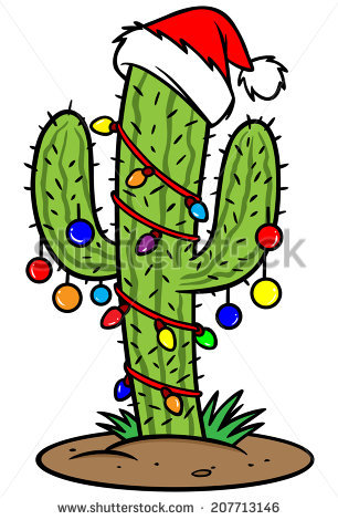 Christmas Cactus Stock Photos, Royalty.