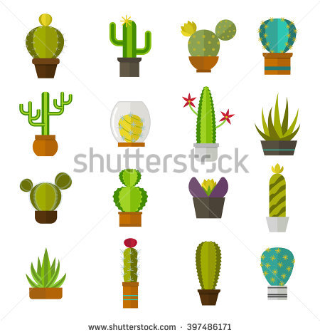 Mexico Landscape Cactus Stock Photos, Royalty.